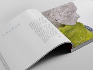 "Amrei Müller Katalog ""Concrete"""